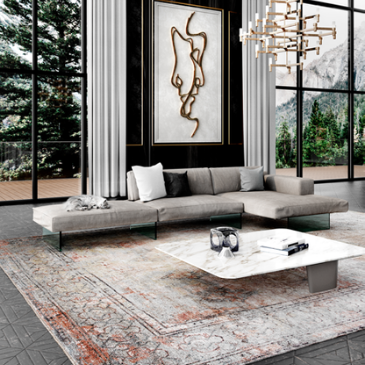 Area Rugs + Carpets